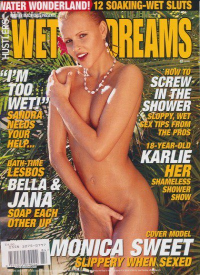 Front cover of Hustlers Wet Dreams Volume 2 magazine