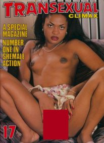 Front cover of Transexual Climax 17 magazine
